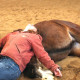 Girl laying on a horse