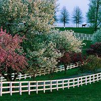 FBEAP Spring farm